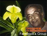 ohashem21